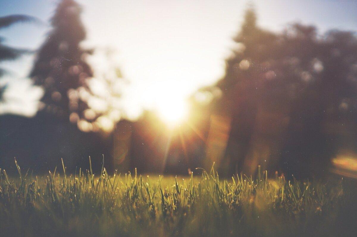 Вітамін Сонця. Заповнюємо дефіцит для гарного самопочуття.